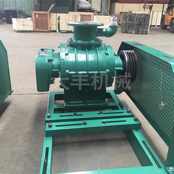 罗茨真空泵配件 大丰机械 新疆罗茨真空泵 干式罗茨真空泵维修