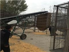 玉米晾晒风干仓|玉米风干仓|玉米风干仓(查看)