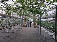 园林灌溉系统,大丰收灌溉,园林灌溉