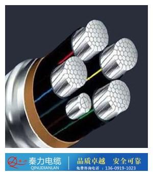 铝合金电缆图片/铝合金电缆样板图 (1)