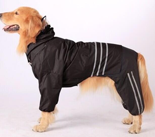 贝宠宠物用品(图)|宠物服装代理加盟|南阳宠物服装
