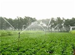 喷灌设备生产_广西喷灌设备_世贸农业设施