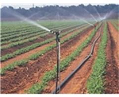 德州喷灌设备_世贸农业设施_优质喷灌设备