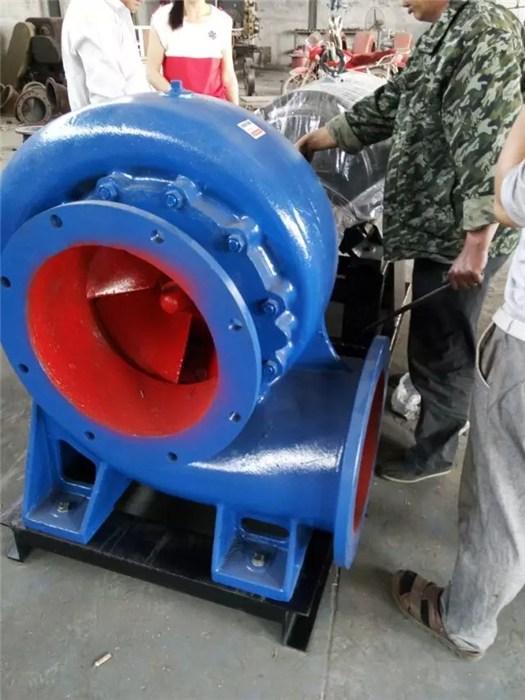 250HW-11混流泵|混流泵|辰龙泵业 混流泵厂家