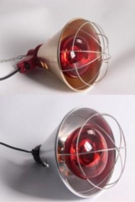 猪用保温灯罩灯罩、小牛保温灯罩、三渡照明(优质商家)