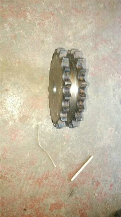 双节距链轮图片/双节距链轮样板图 (1)